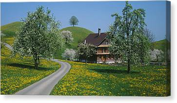 Switzerland, Zug, Road Canvas Print by Panoramic Images