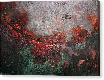 Swoop Canvas Print by James W Johnson