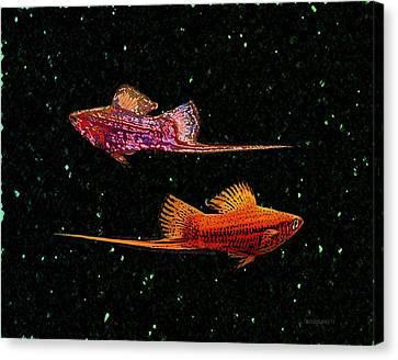 Swordfish Canvas Print by Mario Perez