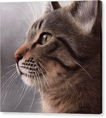 Tabby Cat Painting Canvas Print by Rachel Stribbling