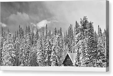 Taking Refuge - Grand Teton Canvas Print by Sandra Bronstein
