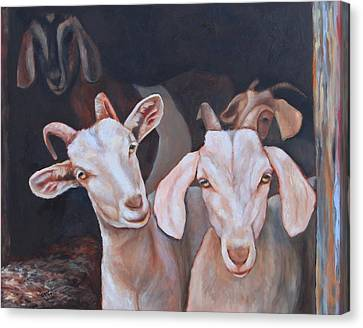 Taking Stock Canvas Print by Eve  Wheeler