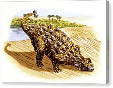 Talarurus Dinosaur Canvas Print by Deagostini/uig