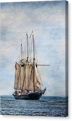 Tall Ship Denis Sullivan Canvas Print by Dale Kincaid