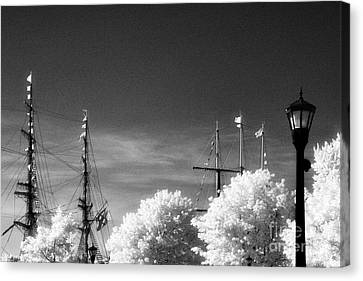 Tall Ships Canvas Print by Jeff Holbrook