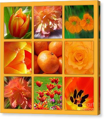 Tangerine Dream Window Canvas Print by Joan-Violet Stretch