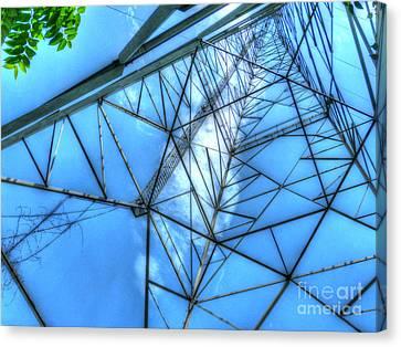 Tangled Web Canvas Print by MJ Olsen