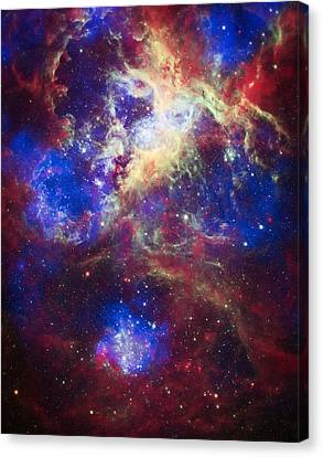 Tarantula Nebula 2 Canvas Print by The  Vault - Jennifer Rondinelli Reilly