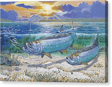 Tarpon Cut In0011 Canvas Print by Carey Chen
