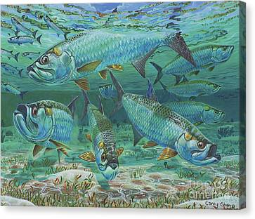 Tarpon Rolling In0025 Canvas Print by Carey Chen