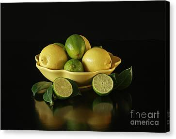 Tart And Tasty With Lemon And Lime Canvas Print by Inspired Nature Photography Fine Art Photography