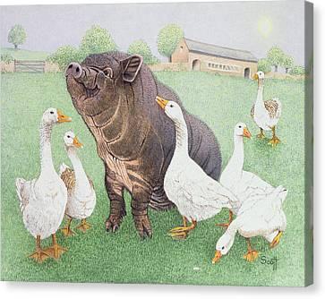 Tasty Morsel Canvas Print by Pat Scott