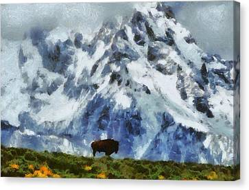 Tatanka Buffalo In Wyoming Canvas Print by Dan Sproul
