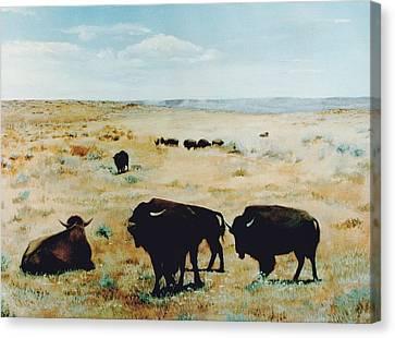 Tatanka Canvas Print by Terri Ana Stokes