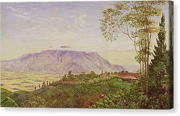 Tea Gathering In Java Canvas Print by Marianne North