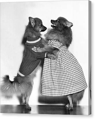 Teaching A Young Dog New Trick Canvas Print by Underwood Archives