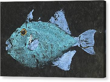 Gyotaku Triggerfish Canvas Print by Captain Warren Sellers