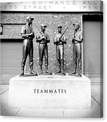 Teammates Canvas Print by Greg Fortier