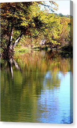 Ted Treehouse Canvas Print by Laurette Escobar