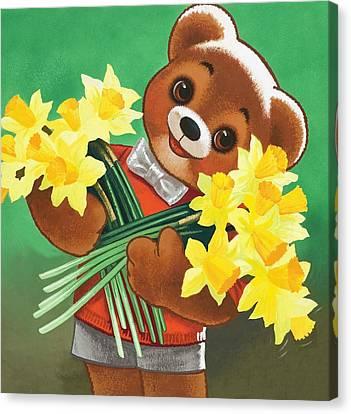 Teddy Bear Canvas Print by William Francis Phillipps