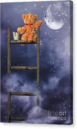 Teddy Painting At Night Canvas Print by Amanda Elwell