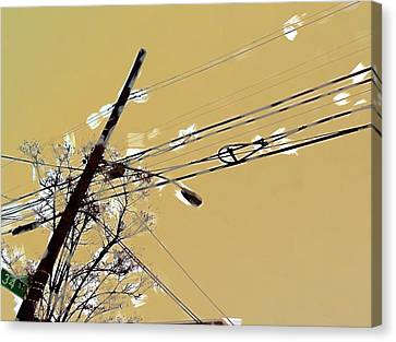 Telephone Pole With Light Canvas Print by H James Hoff
