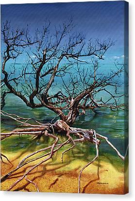 Ten Thousand Islands Canvas Print by Urszula Dudek