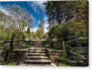 Terrace Garden Canvas Print by Adrian Evans