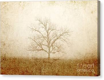 Test Of Time Canvas Print by Scott Pellegrin