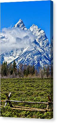 Teton Cathedral Center Panel Canvas Print by Greg Norrell