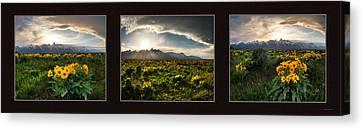 Teton Spring Triptych Canvas Print by Leland D Howard