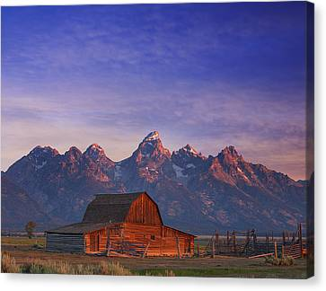 Teton Sunrise Canvas Print by Darren  White