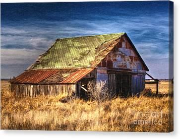 Texas Barn 1 Canvas Print by DS Dodd