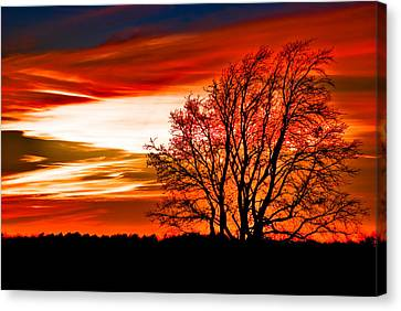 Texas Sunset Canvas Print by Darryl Dalton