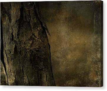 That Old Tree Canvas Print by Dan Sproul