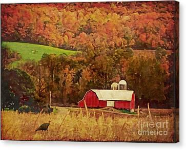 The Autumn Barn Canvas Print by Lianne Schneider