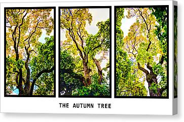 The Autumn Tree Canvas Print by Toppart Sweden