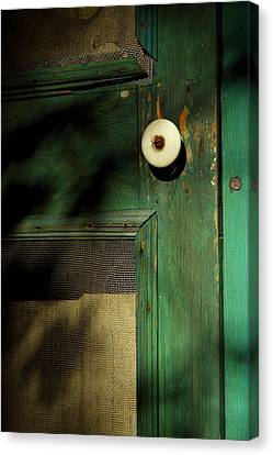 The Back Door Canvas Print by Michael Eingle