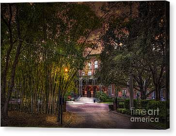 The Bamboo Path Canvas Print by Marvin Spates