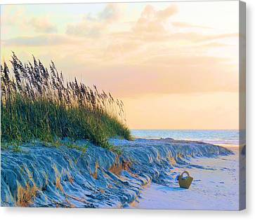 The Basket Canvas Print by JC Findley
