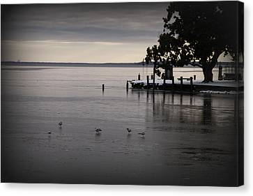The Bay Is Frozen Canvas Print by Carolyn Ricks