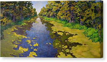 The Bayou Canvas Print by Andrew Danielsen