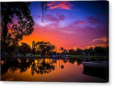 The Bayou Canvas Print by Marvin Spates