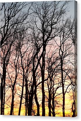 The Beauty Of Nature Canvas Print by Adela Kitty