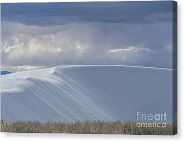 The Beauty Of White Sands National Monument Canvas Print by Sandra Bronstein