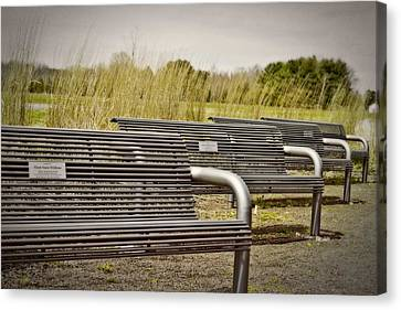 The Benches Canvas Print by Tom Gari Gallery-Three-Photography