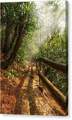 The Benton Trail Canvas Print by Debra and Dave Vanderlaan