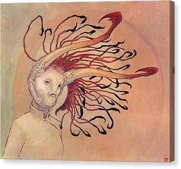 The Bihorn Canvas Print by Ethan Harris