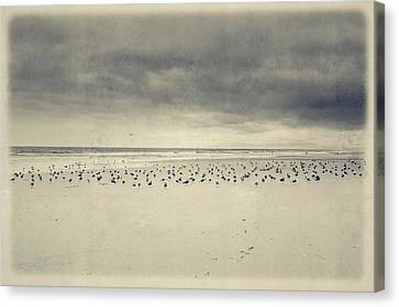 The Birds Canvas Print by Marco Oliveira