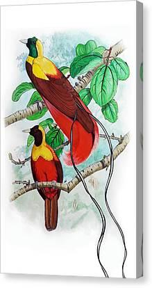 The Birds Of Paradise Canvas Print by Mayur Sharma